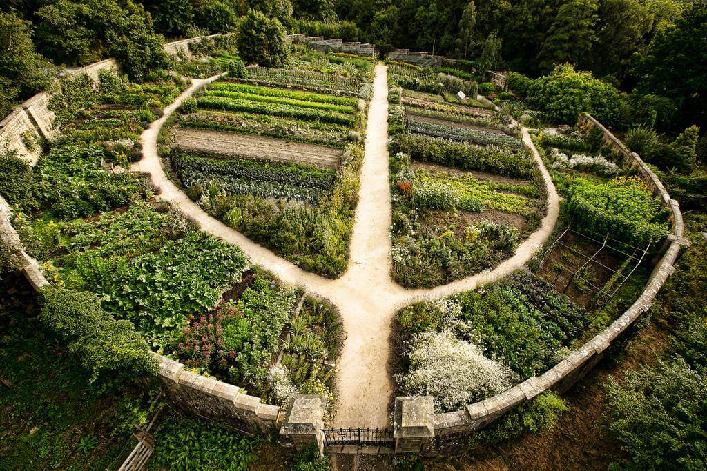 what-is-permaculture