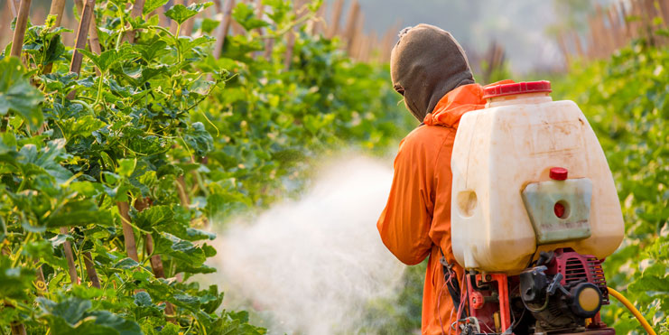 10-man-spraying-pesticides-on-plants