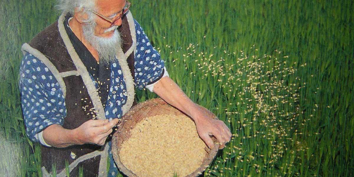dogal tarım